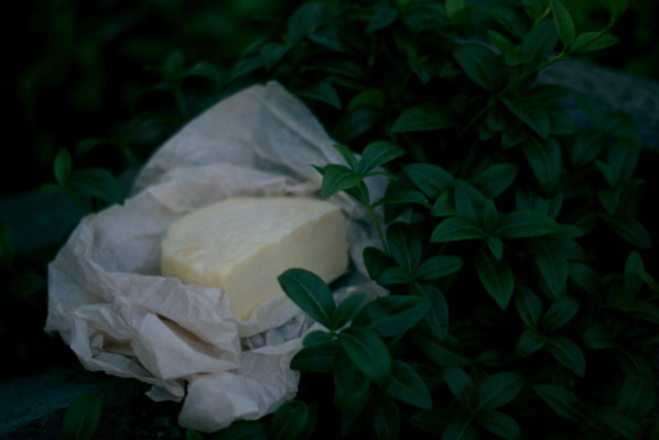 Prvni syr